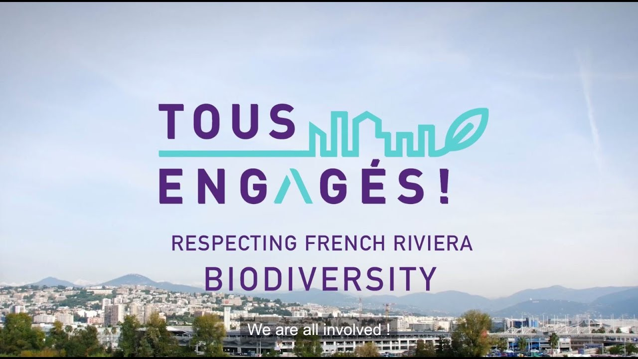 Download S01E07 - Respecting French Riviera biodiversity