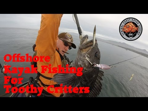 Toothy Lingcod and Rockfish offshore kayak fishing in California