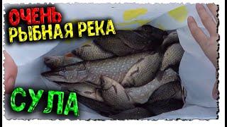 Сула в Октябре Рыбалка на джиг Удочка с поплавком Щука Окунь Карась Плотва Лещ