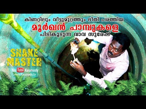 Wow! Indian Spectacled Cobras caught from the well | Vava Suresh | Snakemaster | Latest episode