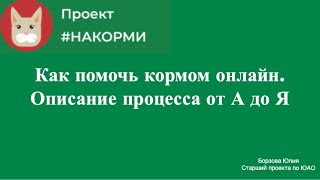 Фото Как помочь бездомным животным онлайн. Процесс от заказа до животного.Москва и МО