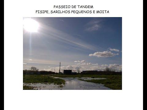 PASSEIO DE TANDEM: BARRA-A-BARRA, SARILHOS PEQUENOS E MOITA