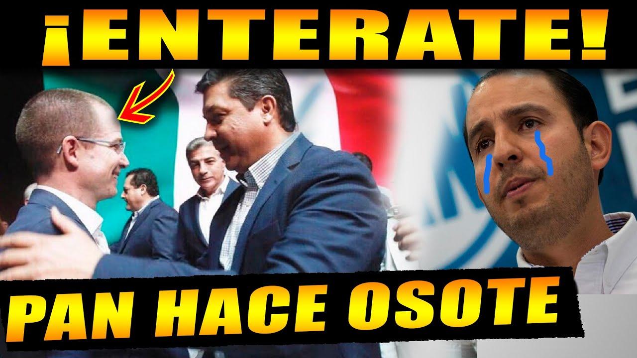 ¡MIENTRAS ESTABAMOS DISTRAIDOS EL PAN SE VUELA LA BARDA! EL PUEBLO DE MÉXICO NO PARA DE REIR