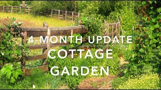 4-Month Cottage Garden Update