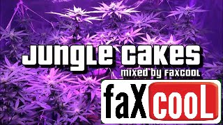 DNB MIX - DRUM AND BASS/REGGAE JUNGLE [VOL.22] (by faXcooL)