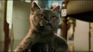 Фильм Кошки против собак за минуту