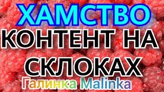 Колесниковы Хамство /Контент на склоках /Обзор Влогов /