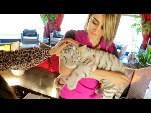 Lana's New Pet Tiger !!!
