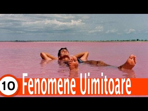 Top 10 Fenomene