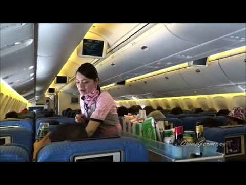 Older ANA 767 Economy Class Full Flight From Manila to Narita