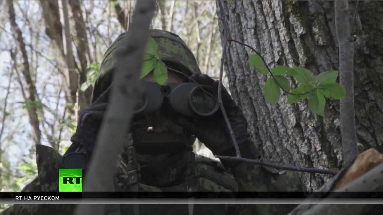 Сказали — НАТО: в странах Восточной Европы размещают ударные подразделения альянса