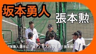 【プロ野球】沖縄キャンプ 読売巨人軍 坂本勇人に喝を入れる張本勲