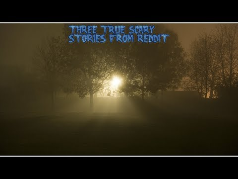 3 True Scary Stories From Reddit (Vol. 46)