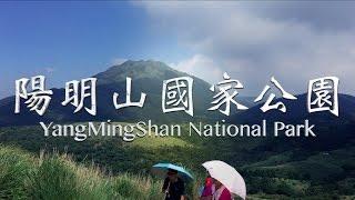 在陽明山對牛彈琴|yangmingshan Nat'l Park【taipei Vlog】travel Taiwan|z1 Gimbal