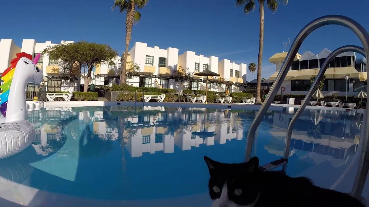 Capri Bungalows And Apartments Maspalomas Gran Canaria