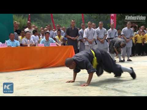 Snake, tiger, or toad? Stunning Kung Fu show at Shaolin Temple in China's Henan