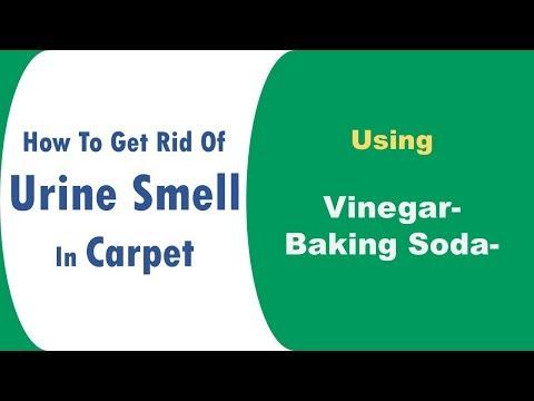 how to get rid of urine smell in carpet using Vinegar & Baking Soda Spray