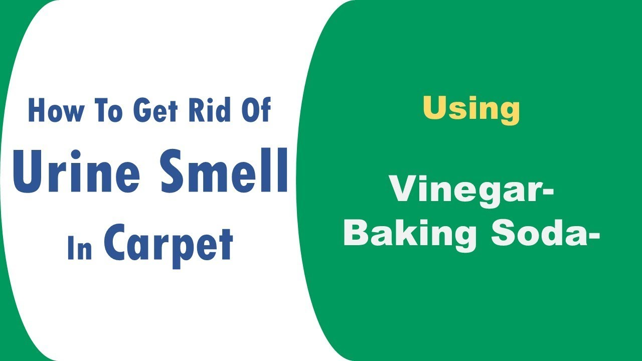 How To Get Rid Of Urine Smell In Carpet With Baking Soda