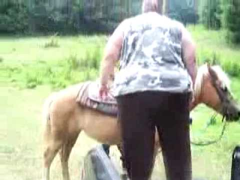 Too Fat for Horse - YouTube