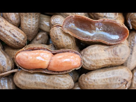 Kelly Bennett - How to make boiled peanuts in a crock pot!