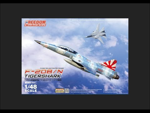 Freedom Model Kits 1/48 F-20B/N Tigershark Scale Model Review
