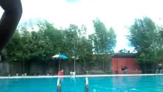 Cowok cowok ganteng bulge di kolam renang