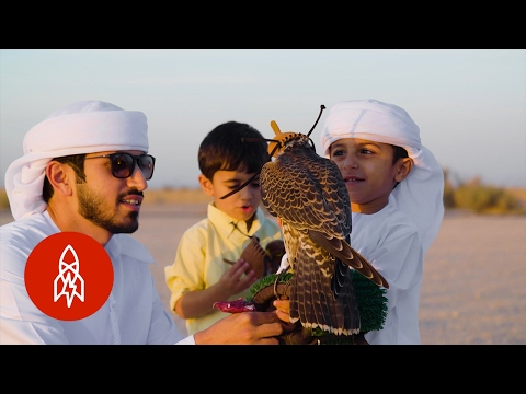 Generations of Flying Falcons in Dubai's Desert