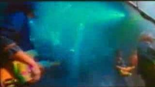 Cardiacs - Baby Heart Dirt (Live)