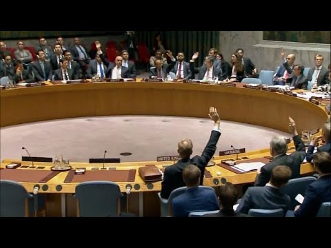 afpes: Rusia veta extender investigación sobre armas químicas en Siria