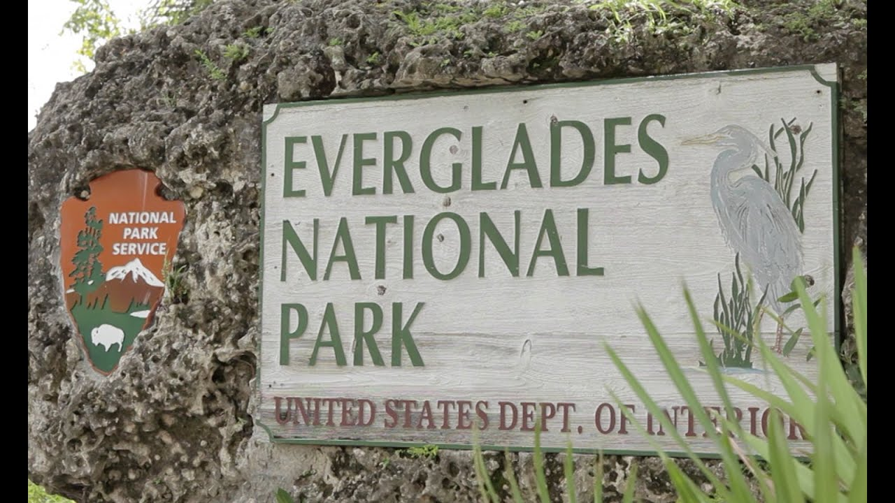 Sea Level Rise In Everglades National Park Youtube