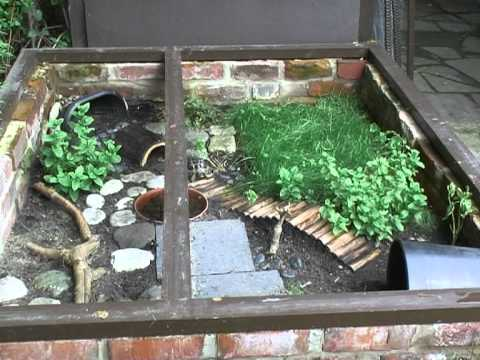 Outdoor tortoise enclosure youtube for Tortoise table org uk site plants