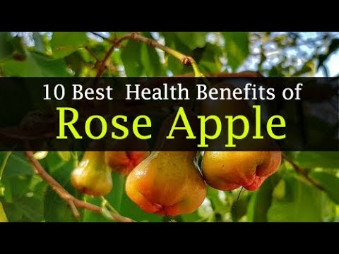 10 Health Benefits of Rose Apple or Water Apple