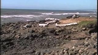 Oregon Coast - God
