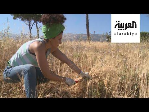 مبادرات زراعية في لبنان لمواجهة الأزمة الاقتصادية  - 10:58-2020 / 7 / 12