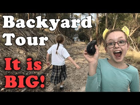 Backyard Tour - Char Char Gaming