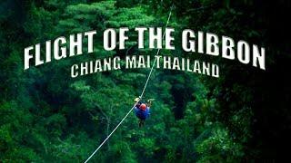 Chiang Mai Zipline - Flight of the Gibbon Zip-Lining Adventure, Thailand