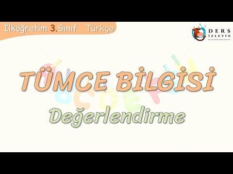 TÜMCE BİLGİSİ / DEĞERLENDİRME