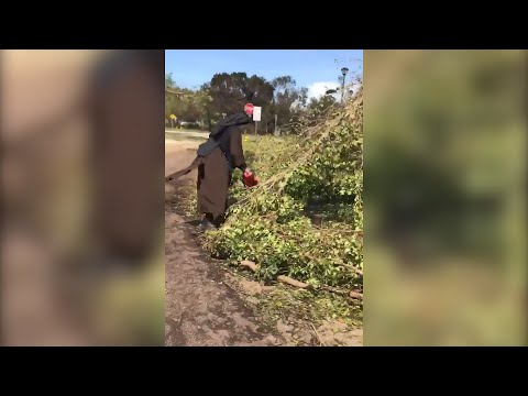 Sister hack: chainsaw-wielding nun helps clean up Hurricane Irma damage