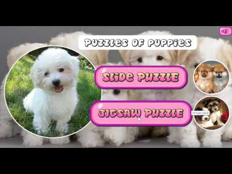 puzzles-of-puppies