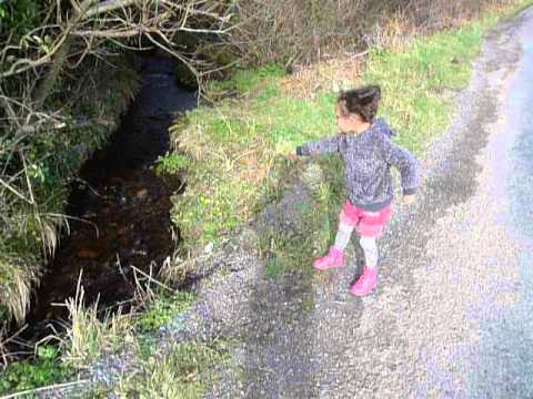 The Ancient and Venerable Art of Pooh Sticks