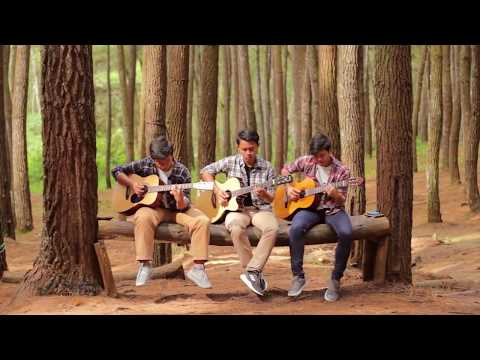 Our Roots by The Trees and The Wild (Cover)