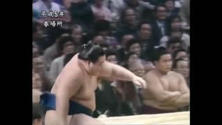 Haru 1993, Día 14 - 7-6 M8w Kitakachidoki 2-2 K1w Wakashoyo 10-3
