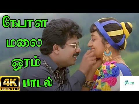 Nepala Malai Oram    நேபாள மலை ஓரம்    SPB, Swarnalatha   Love Duet  H D Song