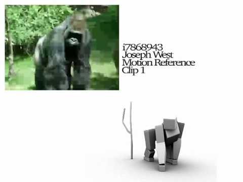 Gorilla Motion Reference Animation