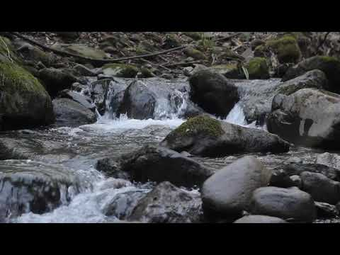 River, water copyright free video clip for creators