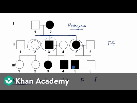 Pedigrees | Classical Genetics | High School Biology | Khan Academy