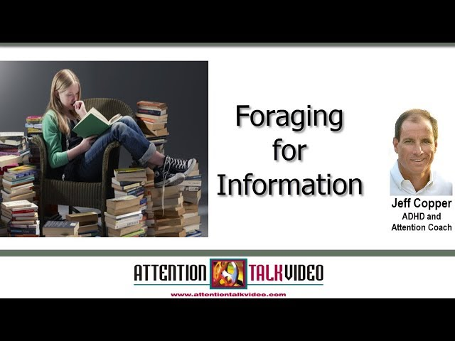 ADHD: Is Foraging for Information Pleasurable?