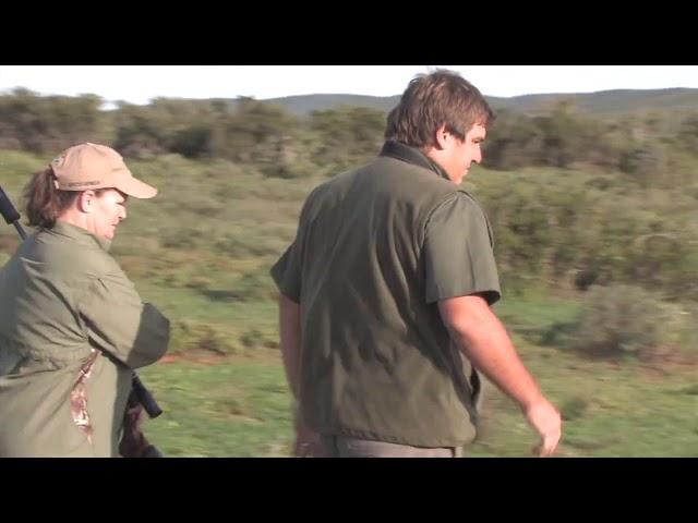 Impala Hunt