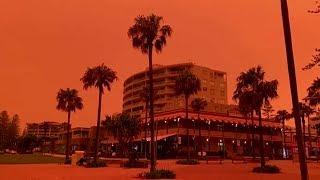 Unprecedented bushfires turn skies orange in New South Wales