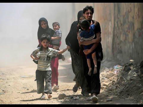 عودة نصف النازحين العراقيين إلى ديارهم  - نشر قبل 8 ساعة